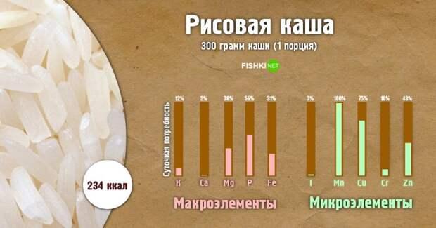 Рисовая каша инфографика, каша, полезности, польза