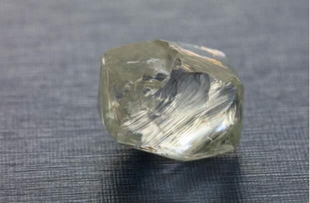 """""""Дочка"""" """"АЛРОСА"""" добыла самый большой в своей истории ювелирный алмаз"""