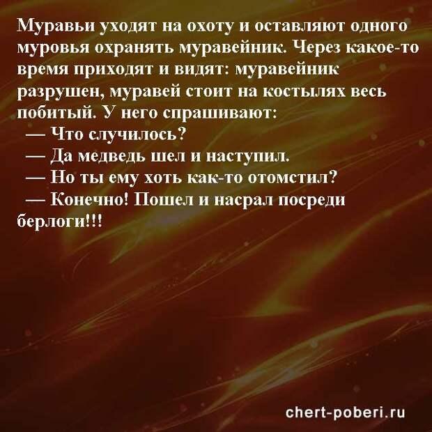 Самые смешные анекдоты ежедневная подборка chert-poberi-anekdoty-chert-poberi-anekdoty-28270203102020-20 картинка chert-poberi-anekdoty-28270203102020-20
