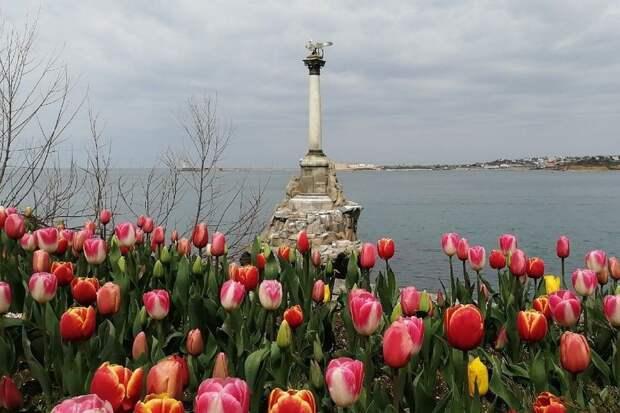 Как Севастополь выглядит в апреле: Цветут тюльпаны и хорошо клюет рыба