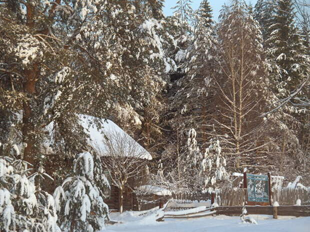 Красоты уходящей зимы
