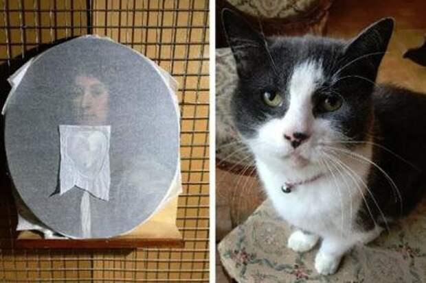 Кот испортил картину на полмиллиона рублей