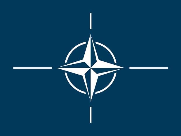 Депутат из ДНР: НАТО И США воевать за Украину не будут