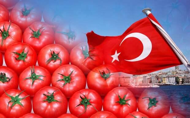 Помидорная акция против турецкого терроризма