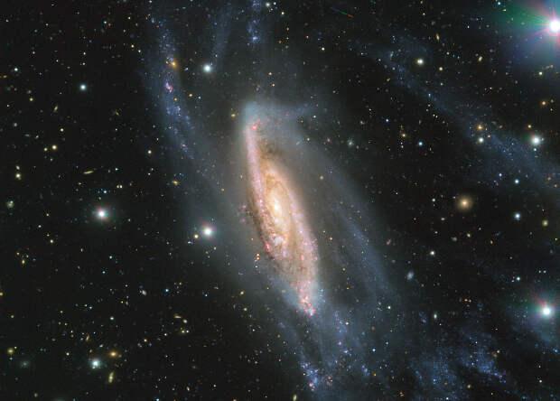Астрономы сфотографировали галактику в 65 миллионах световых лет от Земли