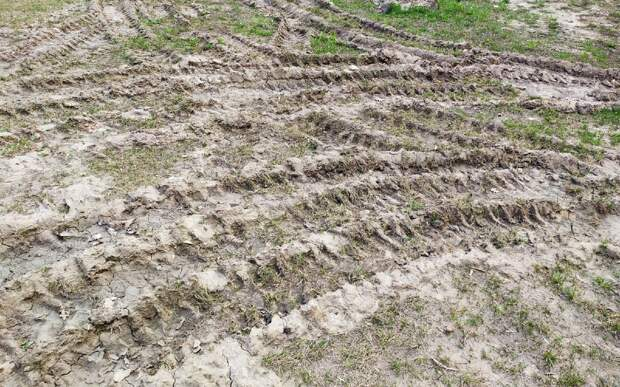 Эколог рассказал о причинах большого количества песка в рязанском воздухе