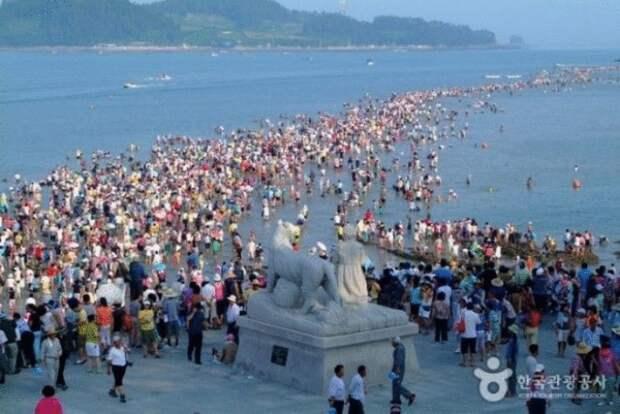Моисеево чудо острова Чиндо. Легенда, которую можно увидеть