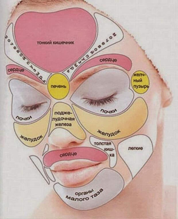 Видим все болезни по лицу - по состоянию пяти зон лица можно поставить приблизительный диагноз.