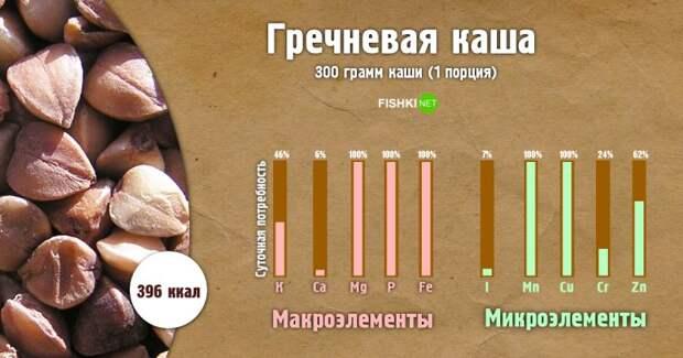 Гречневая каша инфографика, каша, полезности, польза