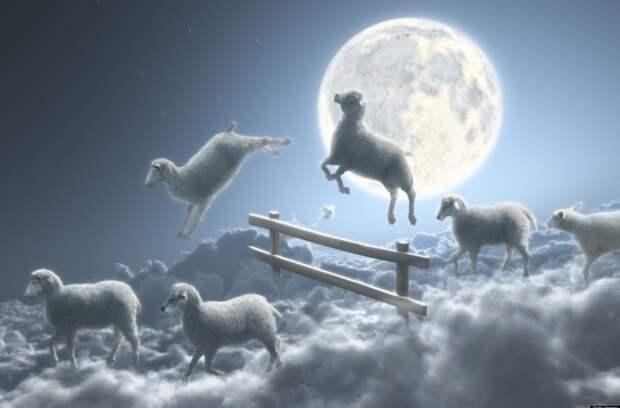 10 мифов о снах, в которые люди почему-то верят столетиями