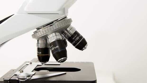 Ученым удалось разглядеть аминокислоты в белках с помощью атомно-силового микроскопа
