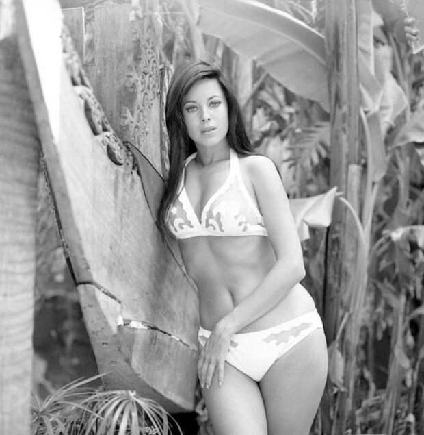 Красотка из 70-ых Филлис Дэвис