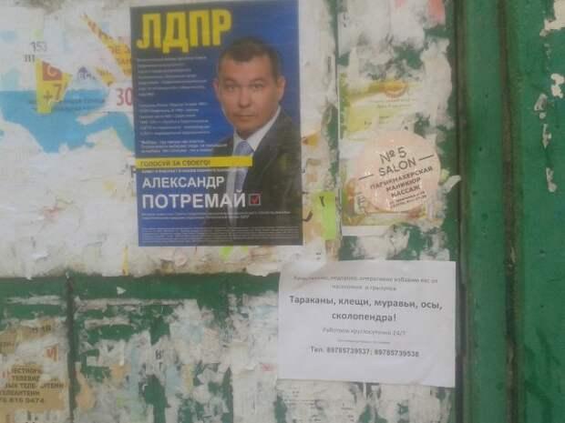 Севастопольцы идут на выборы! Поможет ли?