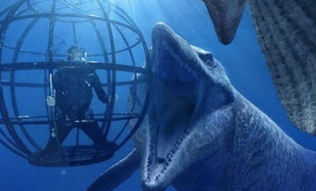 10 морских чудовищ из мифов, которые существуют на самом деле