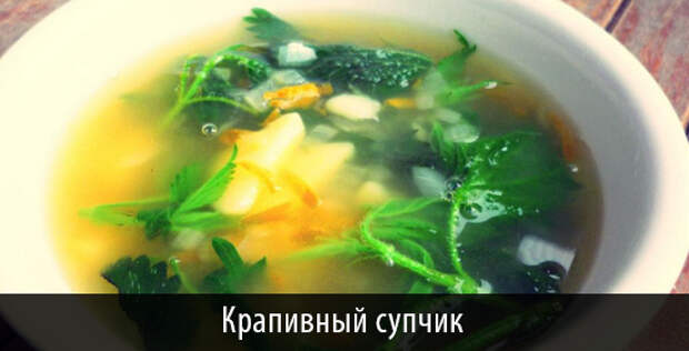 ДОСТОЙНЫЙ КРАПИВНИК. Готовим блюда из травы в день Мавры Рассадницы