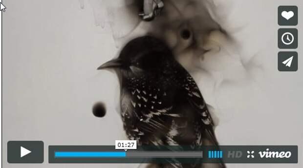 Очень красивое видео про рисунки огнем