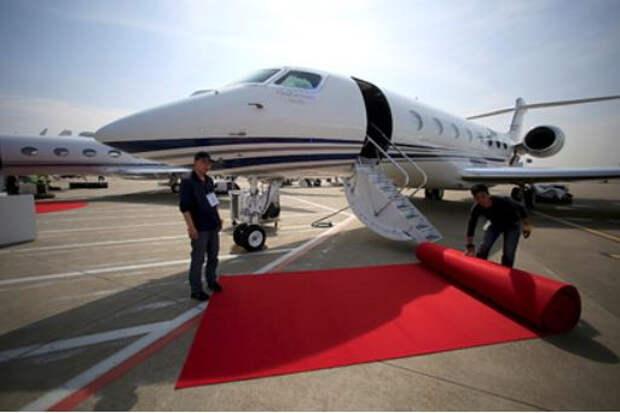 Богачи массово начали отправлять животных в путешествия на частных самолетах