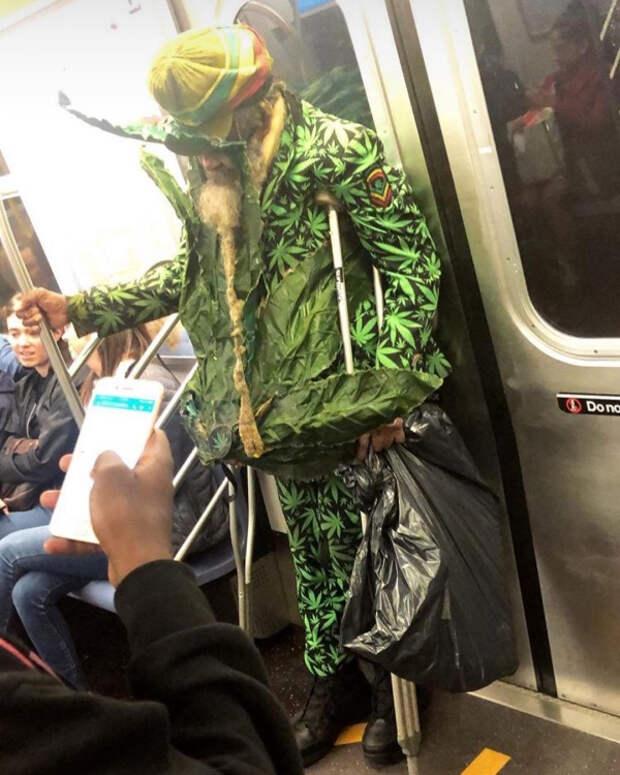 20 фотографий, которые доказывают, что общественный транспорт— это одно большое безумие