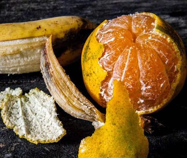 фруктовая кожура