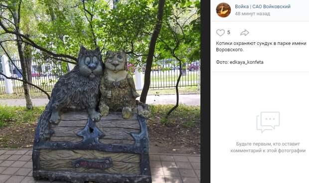 Фото дня: большие котики в парке им. Воровского