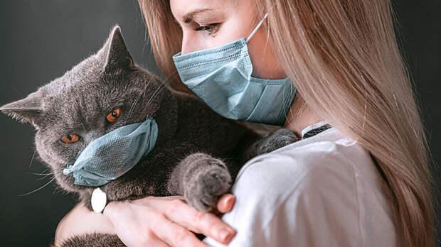 Пора убивать котиков. Британские ученые списали вакцины от COVID-19