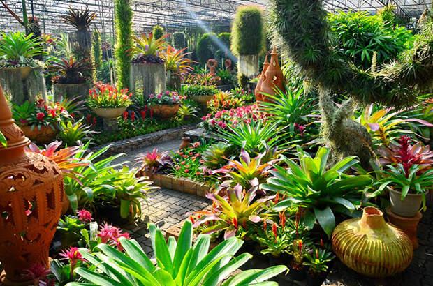 Пятерка садово-парковых комплексов, ставших произведениями искусства