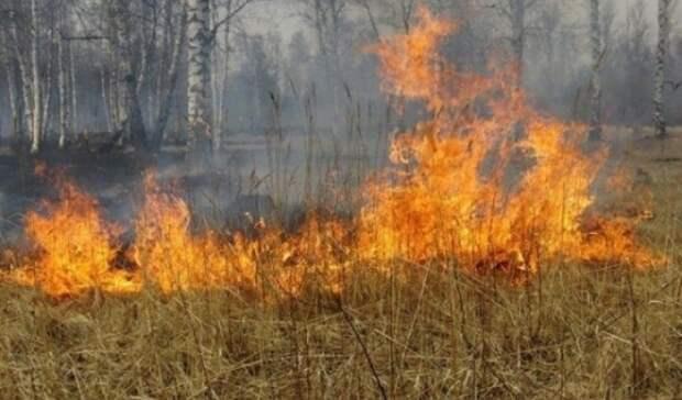 Вдвух районах Оренбуржья резко вырос риск возникновения пожаров