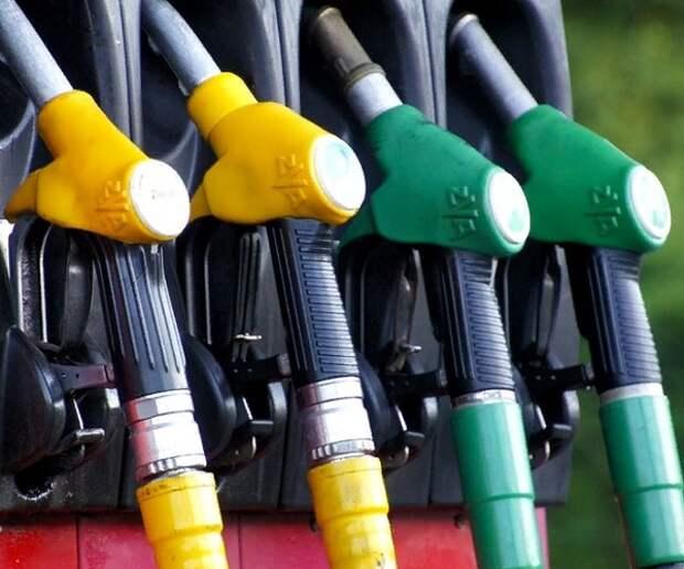 В России вступил в силу временный запрет на ввоз топлива