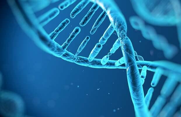 Ученые тайно обсудили вопрос возможности создания искусственного генома человека
