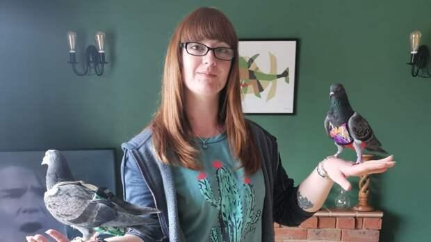 Англичанка тратит тысячи фунтов на одежду для голубей