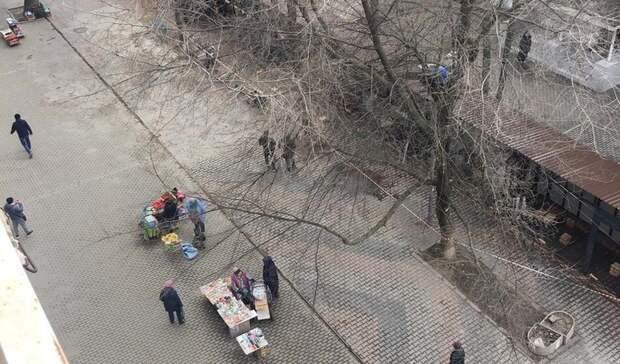 Жители улицы Сержантова умоляют спасти аллею отстроительства рынка