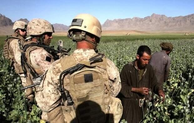 Бегство США из Афганистана ничем не грозит ни нам, ни Средней Азии