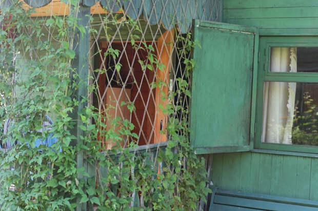 Макраме в саду. Как сплести сетку для лиан?