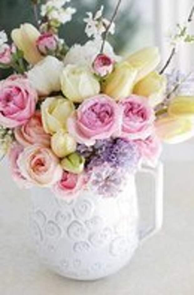 Как вырастить красивые розы?