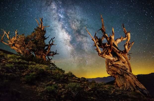 Астрофотография Шейна Блэка: восторг, захватывающий дух