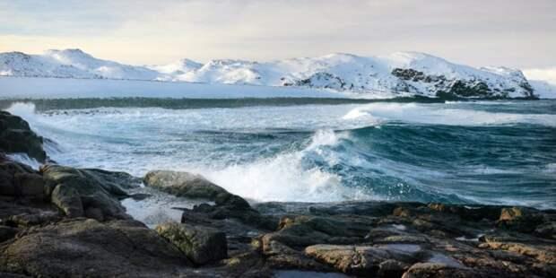 Арктический совет пережил 25 лет непростых отношений между Россией и Западом, но сможет ли он адаптироваться к изменению климата