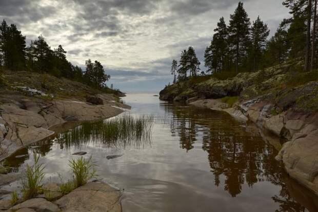 ВКарелии хотят создать эко-отели награницах сзаповедниками