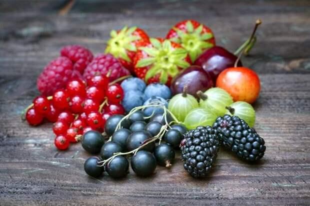Интересно: заморозка засахаренных ягод и трав