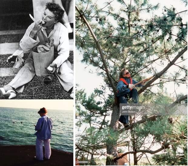 """Кэтрин Хепбёрн и её личный """"рай"""" у воды"""