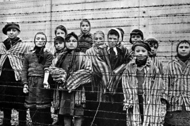 Операция Тиргартенштрассе4 зачем Гитлер отбирал душевнобольных