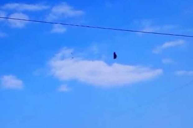 Загадочный объект в небе над Флоридой