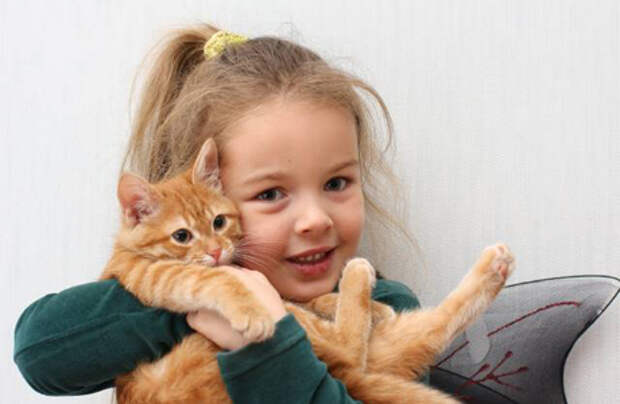 http://mama.ua/wp-content/uploads/2011/11/Atmosfera-priyatnogo-psihologicheskogo-komforta.jpg