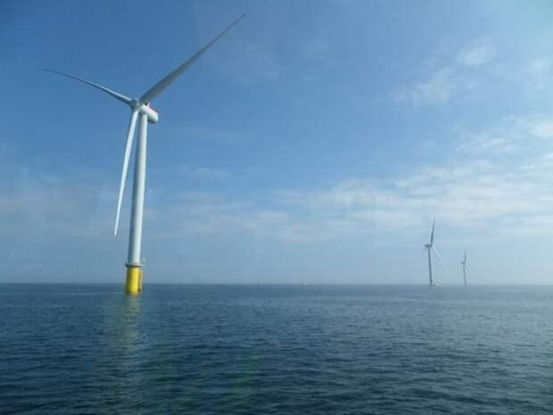 Как выглядит крупнейшая ветряная электростанция в мире (11 фото)
