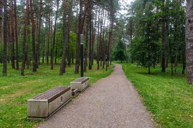 Лесопарковые зоны предлагают защитить от вырубки и застройки