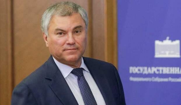 Володин указал на необходимость анализа эффективности работы органов власти