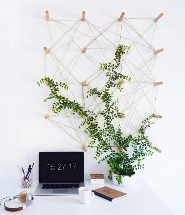14 идей, как оформить зелёную стену из растений в доме