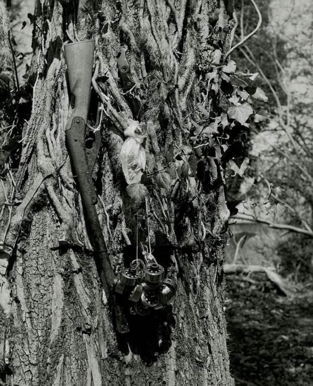 Черно-белый снимок