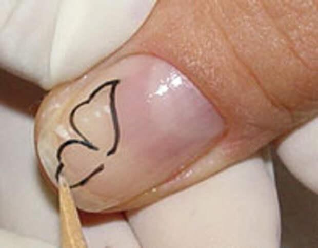Как нарисовать бабочку на ногтях (3) (196x153, 21Kb)