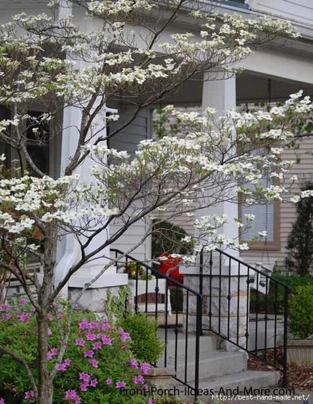 front-porch-dogwoods-1 (500x644, 214Kb)