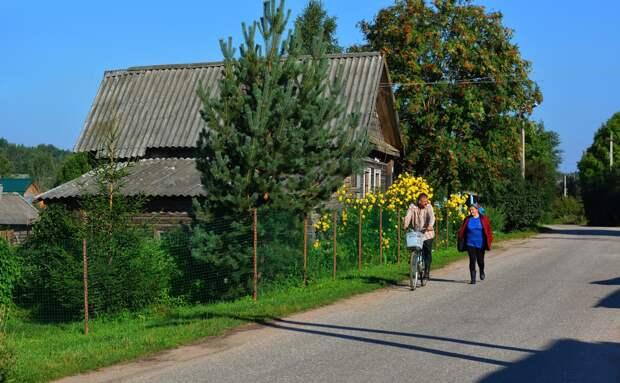 В России резко подорожала загородная недвижимость